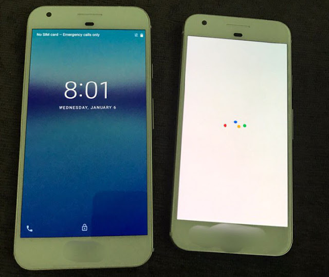 Poll: Do you like the leaked design of the Pixel Smartphones