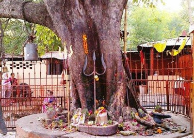 Shiva Linga and Trisula under a Peepal tree