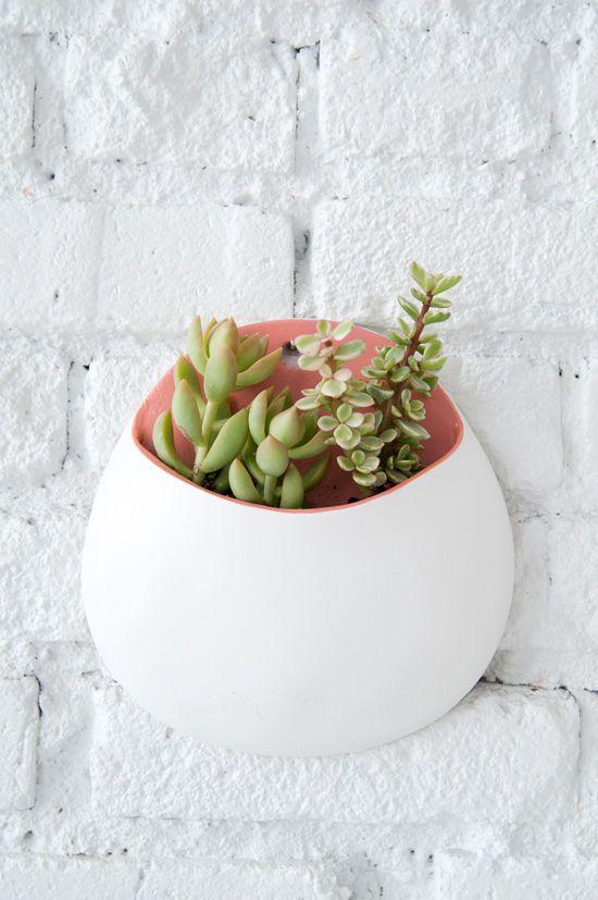 Plantas na área interna