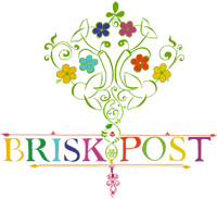 brisk post: briskpost logo icon
