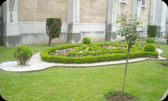 Ni a bonita blogger traveller flores for Jardines tivoli zona 9