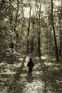 forest, trees, nature, kid, child, small child, lose oneself, party, fear, mood, serenity, forest road