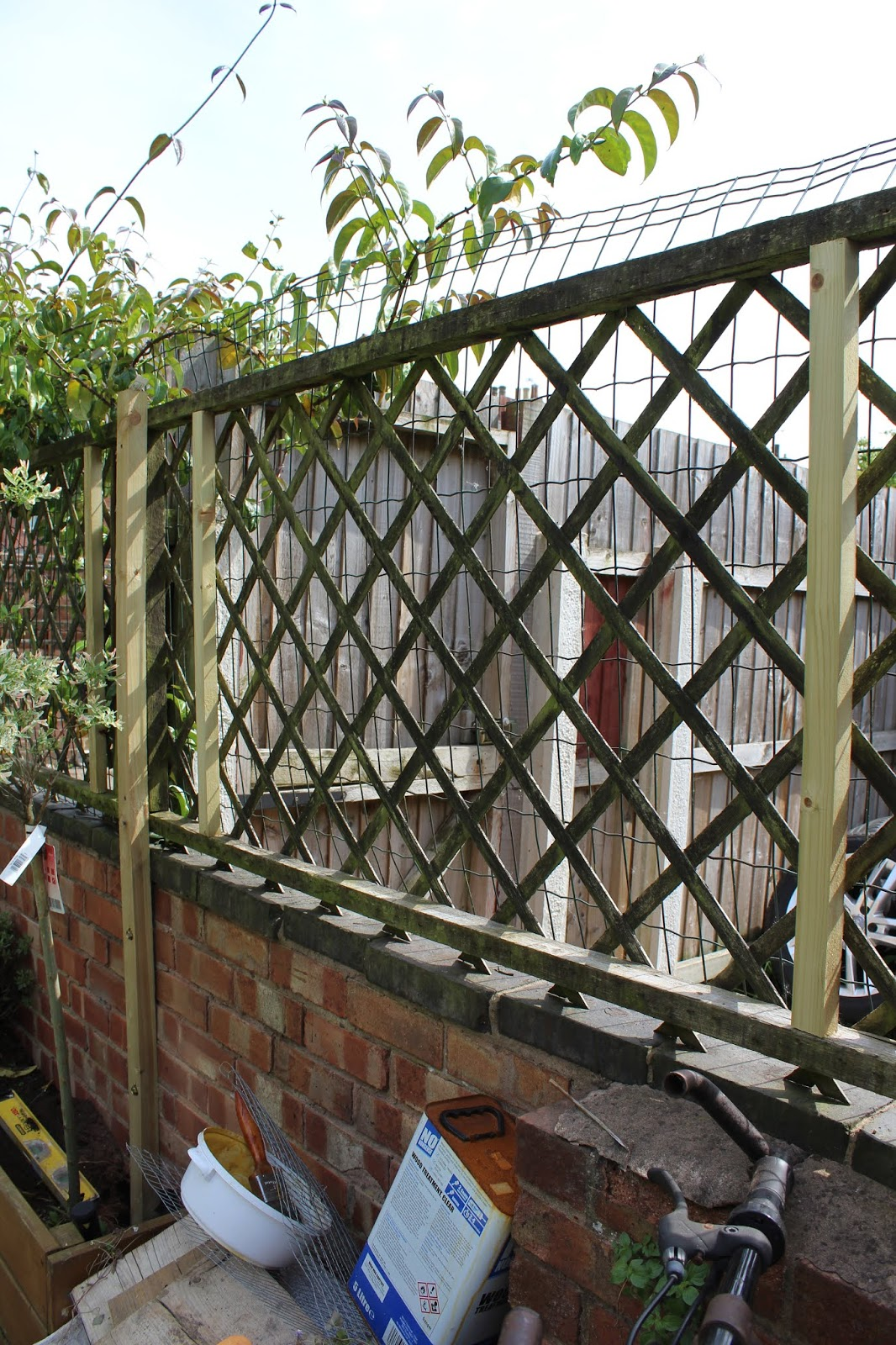 Trellis on top of wall
