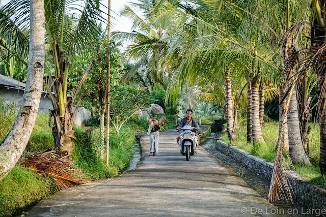 Région Tegallalang - Bali