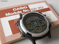 Casio BGR-10