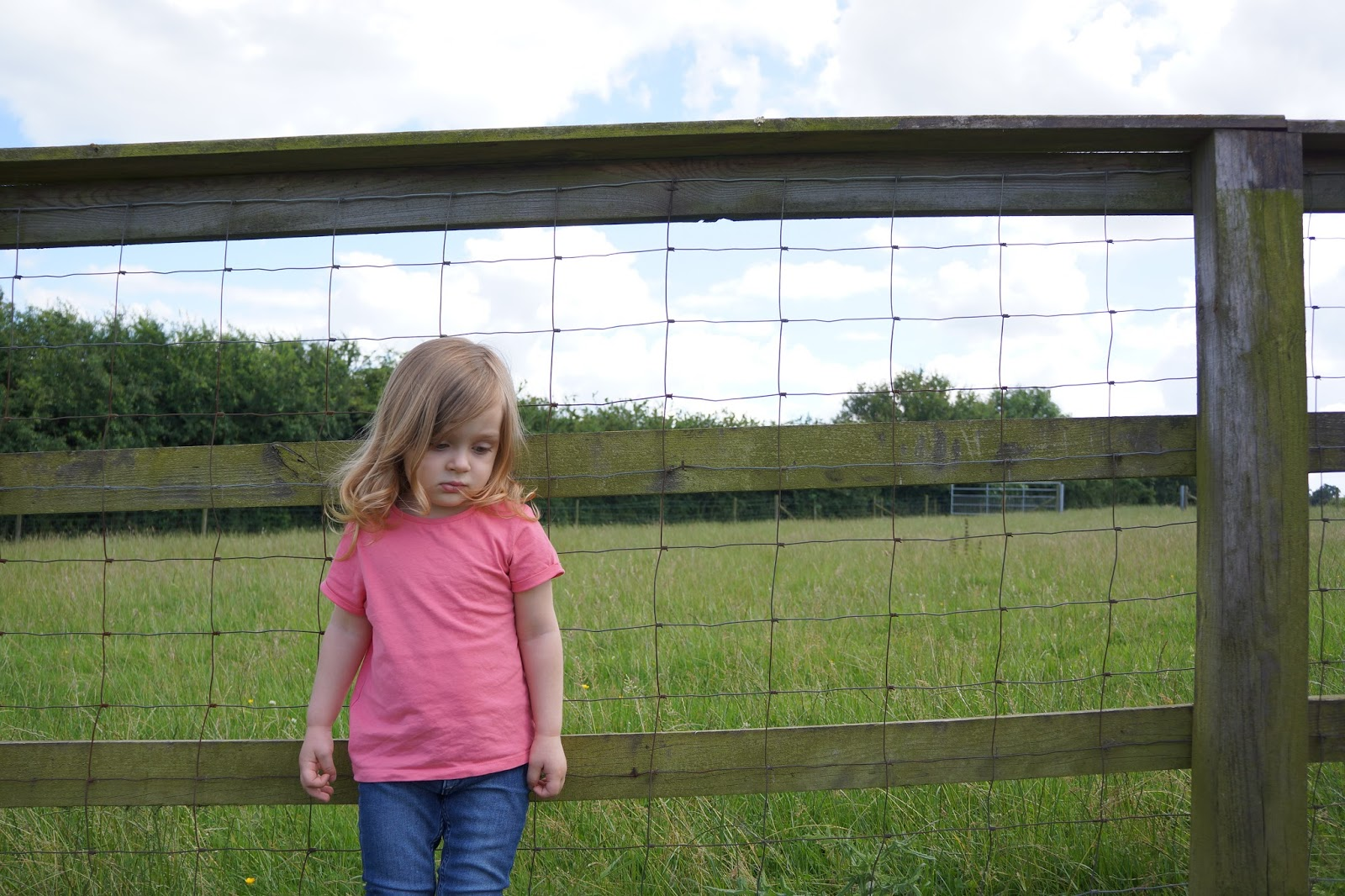 toddler girl standing next to a fence