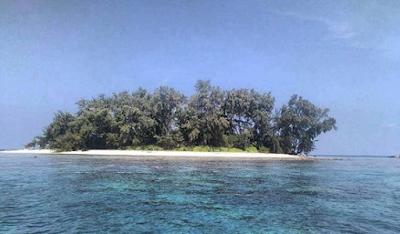 Pulau Kayu Angin Bira