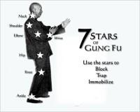 Yip Man 7 Stars of Gung Fu