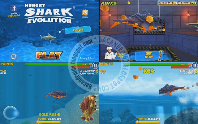 download Game Hungry Shark Evolution Apk Mega Mod  For Android