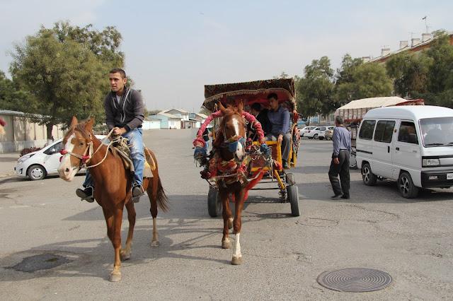 Ouzbékistan, Andijan, cheval, © L. Gigout, 2012