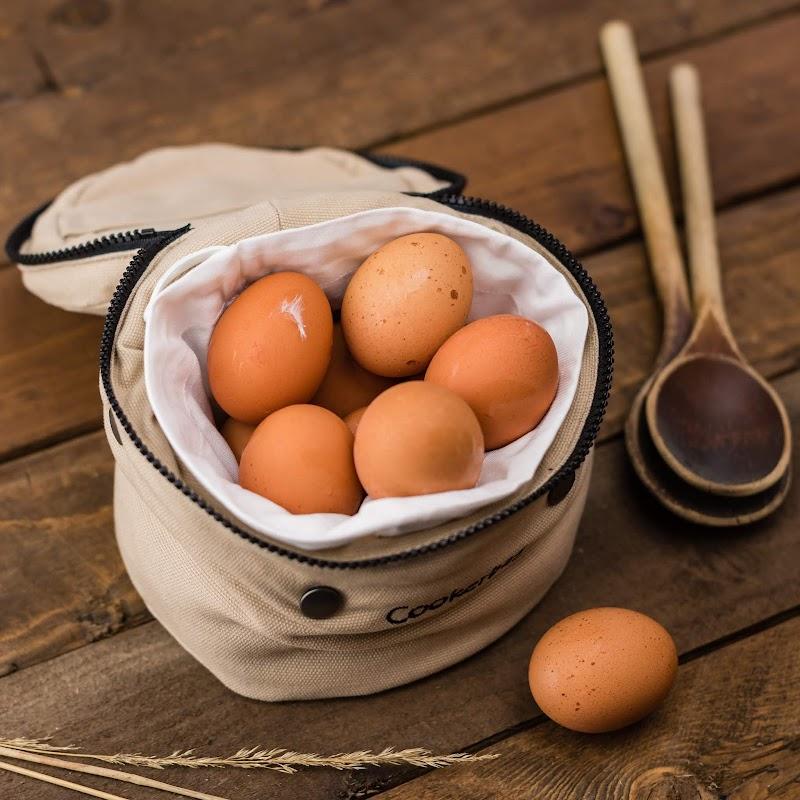 Boleh ke makan telur semasa dalam pantang?