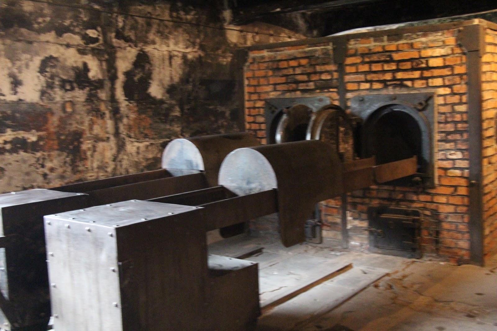 Holocaust Study Tour: Day 10 - Auschwitz