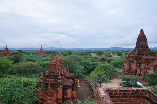 Bagan sejauh mata memandang