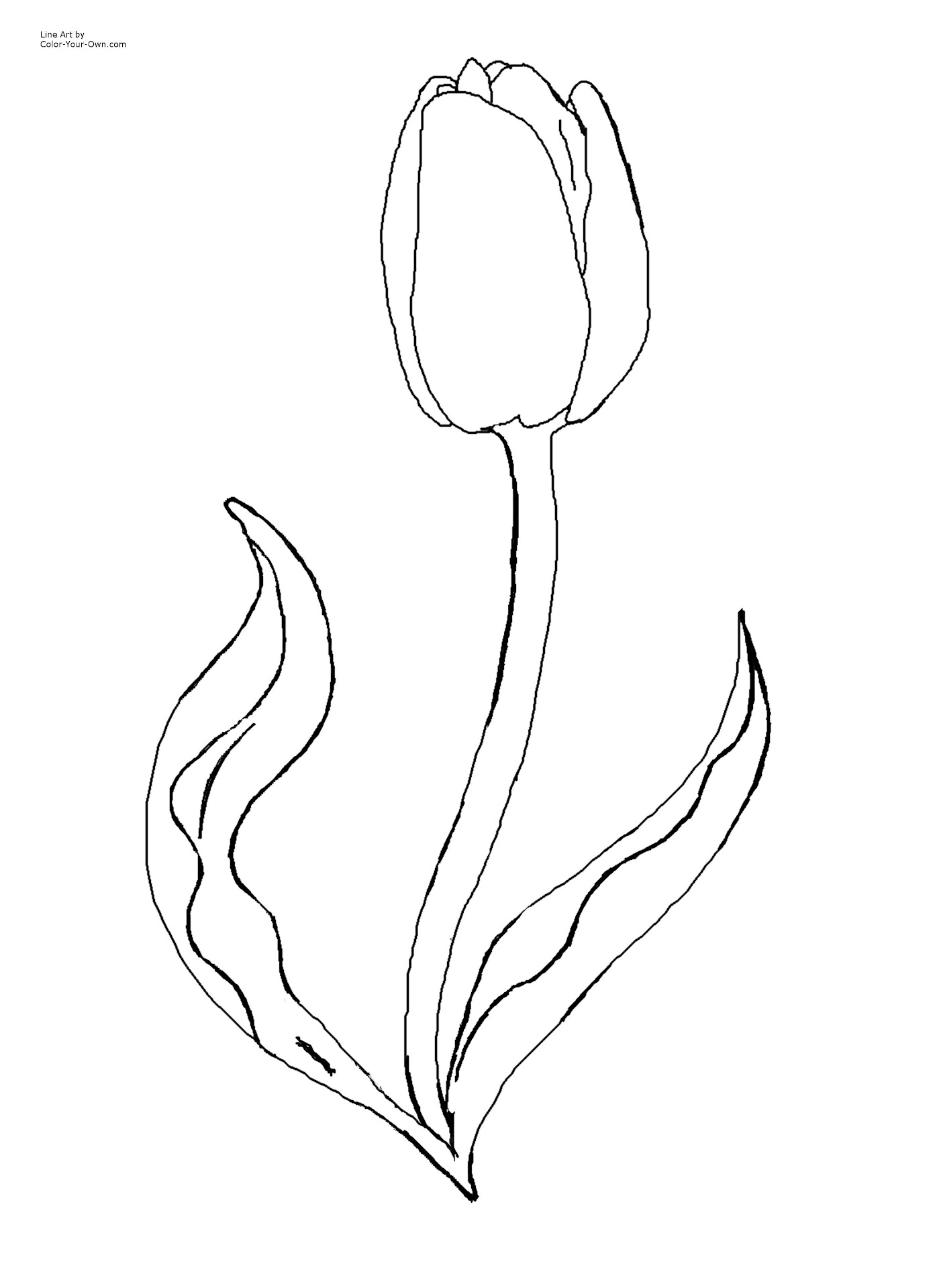 best flower pot template coloring pages pictures free coloring