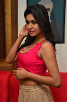 Akshita super cute Pink Choli at south indian thalis and filmy breakfast in Filmy Junction inaguration by Gopichand ~  Exclusive 046.JPG
