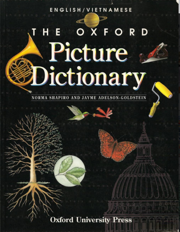 PICTURE OXFORD DICTIONARY (ENGLISH-VIETNAM)