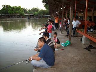 Umpan-Ikan-Tombro-Kolam