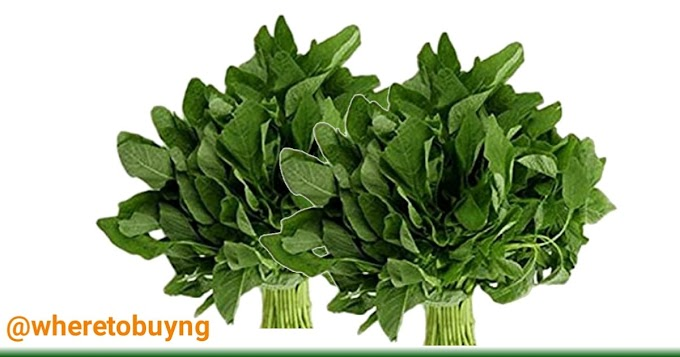 How eating of spinach helps in rejuvenating your body with vitamins and minerals
