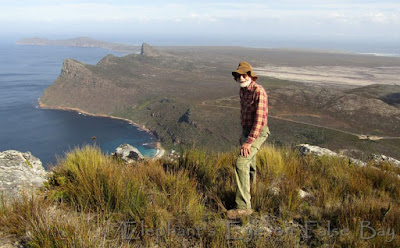 Steenberg Ridge to Cape Point