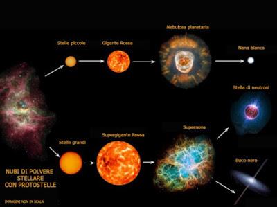 Le due possibili evoluzioni, con relative fasi, dalla nube di polvere stellare alla nana bianca o, in alternativa, al buco nero. L'immagine è tratta dalla pagina al link in calce.
