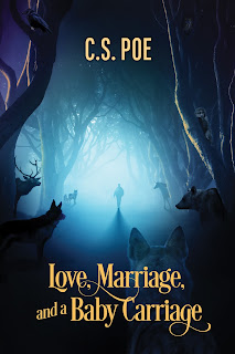 https://www.dreamspinnerpress.com/books/love-marriage-and-a-baby-carriage-by-cs-poe-7129-b