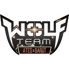 Wolfteam 300 Adet Kod Etkinliği  2018
