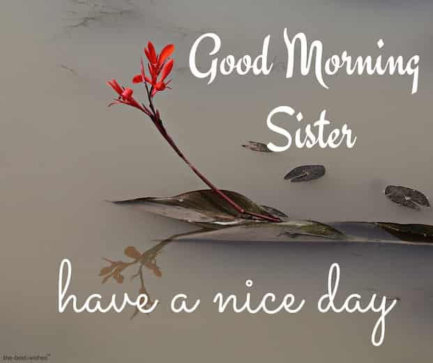 good morning wishes for elder sister