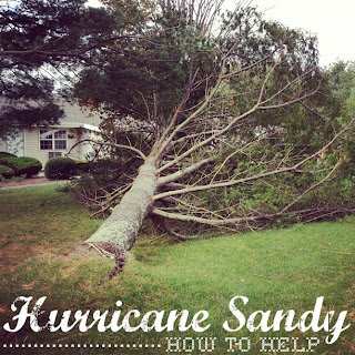 How to help Sandy Victims