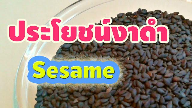 ประโยชน์งาดำ Sesame ธัญพืชแคลเซียมสูง มีสารเซซามิน สรรพคุณบำรุงร่างกาย อาหารสุขภาพรักษามะเร็ง