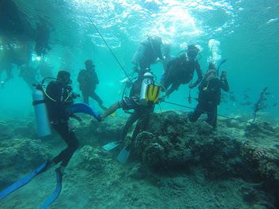 scuba diving di bunaken