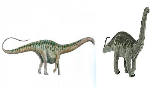 Apatosaurus Türü Nasıl?