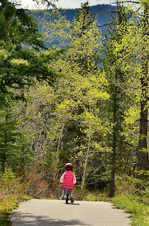 Bow Valley Provincial Park Bike Path