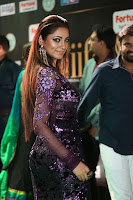 Shilpi Sharma looks Glamorous in Transparent Purple Glittering Gown at IIFA Utsavam Awards 013.JPG