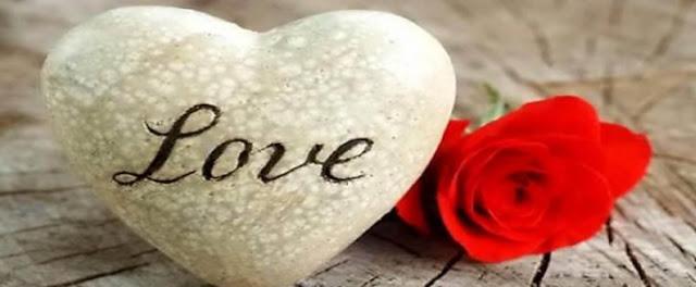 قصة حب عبر الانترنت (الفصل الثانى)