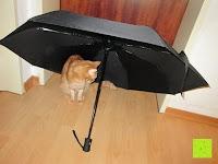 Erfahrungsbericht: GHB Automatic Regenschirm Taschenschirm mit 96 cm Durchmesser Schwarz