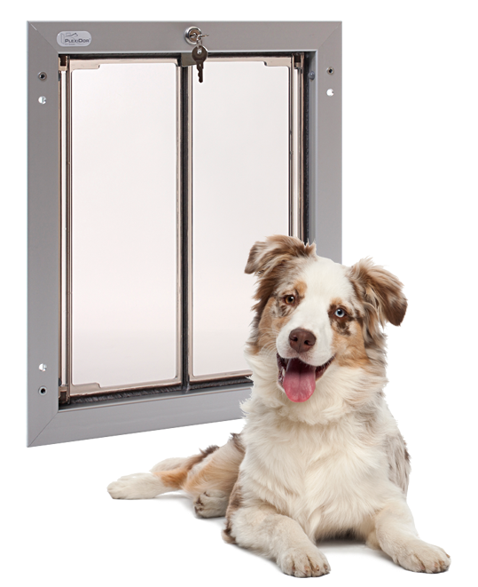 Plexidor Pet Doors: Do you know who invented the pet door?