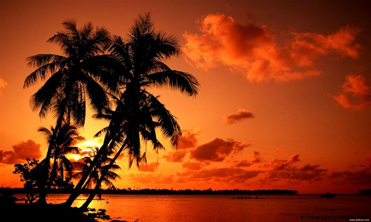 Tropical Island Beach Sunset: Sunset Tropical Island Wallpaper