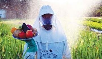 Envenenamento em massa - governo liberou vários agrotóxicos de maior grau toxicológico possível