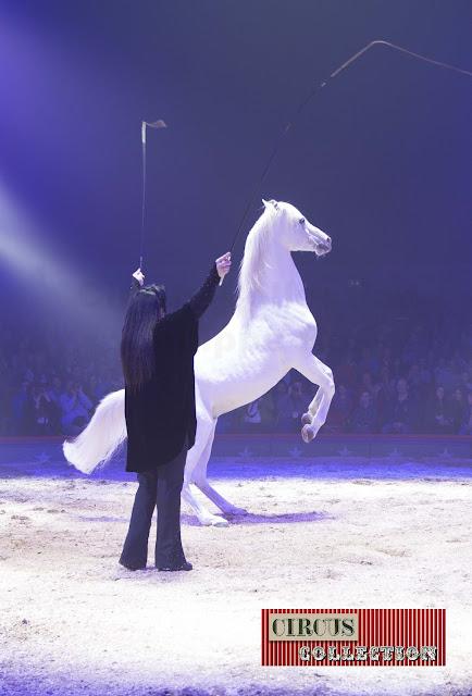 Spectacle chevaux Geraldine Katarina Knie