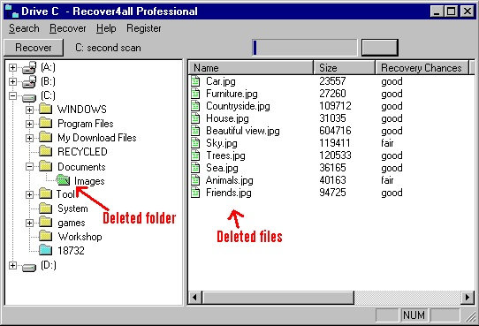 Recover4all Professional 5.01 Full