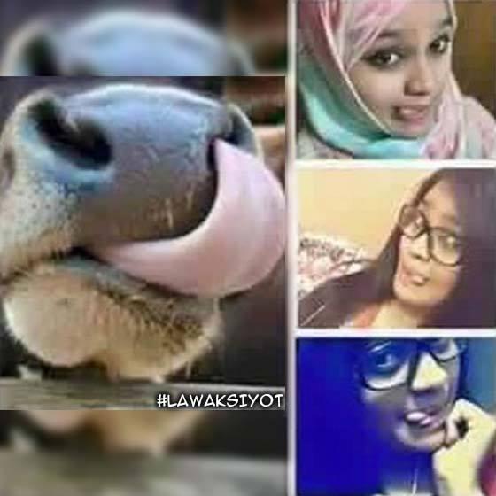 5 Jenis Selfie Inspirasi Dari Haiwan