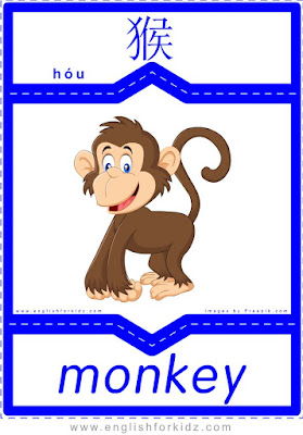 Monkey - English-Chinese flashcards for wild animals topic