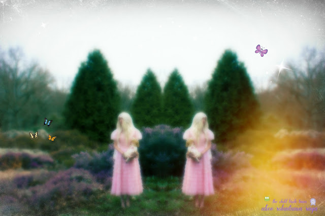 faerie tales of violette