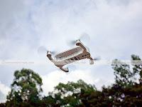 Dobby-Drone-flight-high