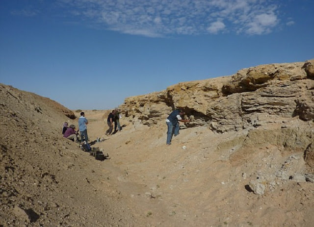 Stone Age tools and animal bones in Tunisia are 'clues to an early human corridor'