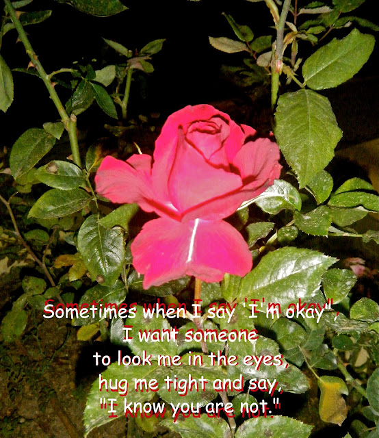 """Sometimes When I Say I M Okay I Want Someone To Look Me: Flowery Blessing: Sometimes When I Say 'I'm Okay"""", I Want"""