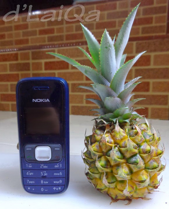Nokia 1209 dan Nanas