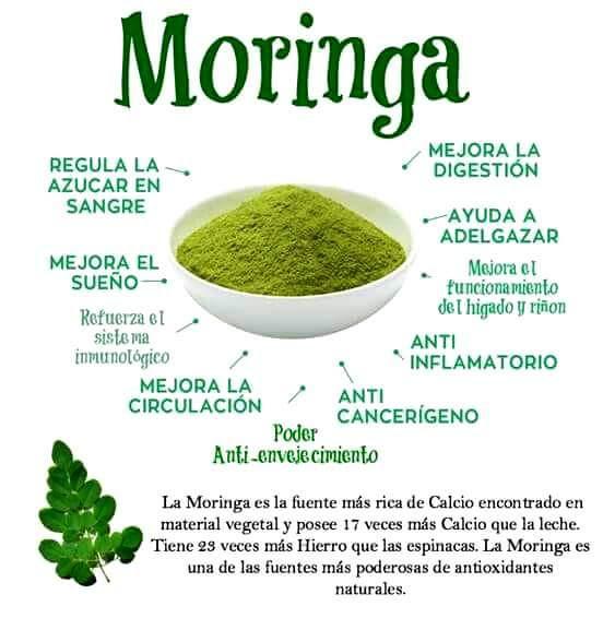 MORINGA - CALCIO & HIERRO