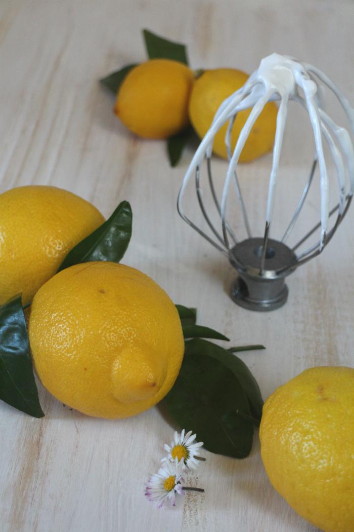 lemon-basil-tart, tarta-de-limon-y-albahaca