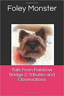 Tails From Rainbow Bridge II:  Tributes and Observations